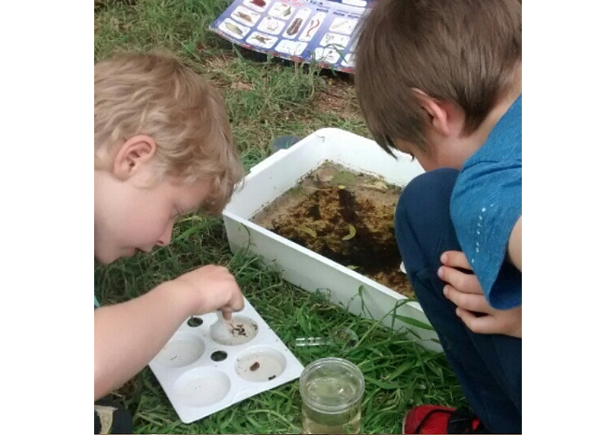 Pond Patrol - Garden Activity Morning for Children