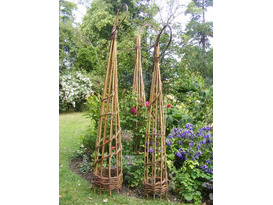 Obelisk & Platter Willow Weaving Workshop