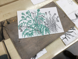 Art in the Garden - 4 Week Course GCSE Level