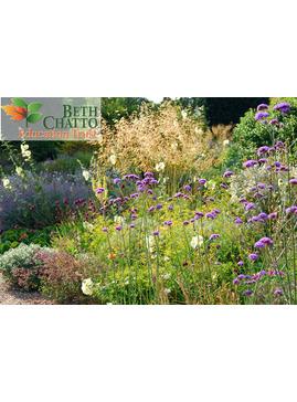 The Drought Tolerant Gravel Garden