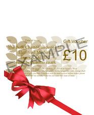 £10 Gift Token